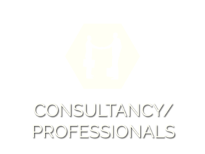 Consultancy / Proffessionals